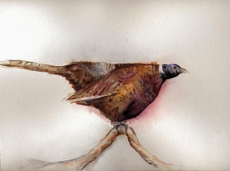Akvarellimaalausta ja kipuilua, VV #2